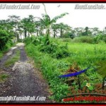 FOR SALE Beautiful 2,600 m2 LAND IN UBUD BALI TJUB491