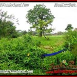 Affordable 2,600 m2 LAND IN UBUD BALI FOR SALE TJUB491