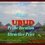 Affordable PROPERTY 950 m2 LAND SALE IN UBUD BALI TJUB428