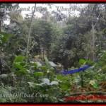Beautiful PROPERTY UBUD LAND FOR SALE TJUB431