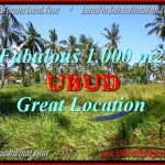Beautiful PROPERTY UBUD LAND FOR SALE TJUB434