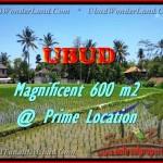 Magnificent 300 m2 LAND FOR SALE IN UBUD BALI TJUB436