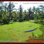Affordable 500 m2 LAND SALE IN UBUD TJUB438