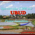 Magnificent PROPERTY LAND FOR SALE IN UBUD TJUB441