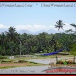 FOR SALE Exotic 8.000 m2 LAND IN UBUD TJUB441