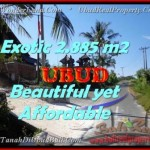 Magnificent PROPERTY LAND FOR SALE IN UBUD TJUB442