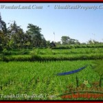 Affordable 2.885 m2 LAND SALE IN UBUD TJUB442