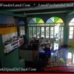 Magnificent Sentral Ubud BALI LAND FOR SALE TJUB443