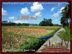 FOR SALE Beautiful PROPERTY 2,800 m2 LAND IN UBUD BALI TJUB498