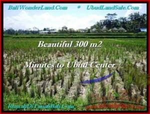 Exotic LAND IN Sentral Ubud BALI FOR SALE TJUB500