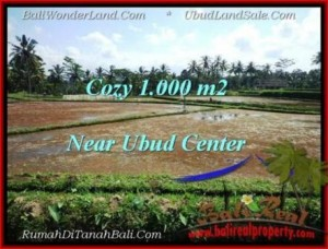 Magnificent Sentral Ubud BALI LAND FOR SALE TJUB501