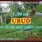 Exotic 1,200 m2 LAND IN UBUD BALI FOR SALE TJUB422