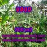 Beautiful 300 m2 LAND SALE IN UBUD BALI TJUB415