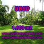 Exotic PROPERTY UBUD LAND FOR SALE TJUB416