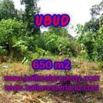 Magnificent UBUD BALI 650 m2 LAND FOR SALE TJUB417