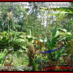 Exotic PROPERTY 300 m2 LAND FOR SALE IN Sentral Ubud TJUB415