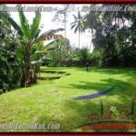 1,600 m2 LAND FOR SALE IN UBUD BALI TJUB416