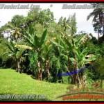 Exotic UBUD BALI 1,600 m2 LAND FOR SALE TJUB416