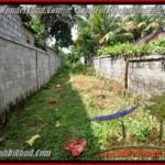 FOR SALE Affordable PROPERTY 650 m2 LAND IN UBUD BALI TJUB417