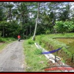Exotic 2,600 m2 LAND IN UBUD BALI FOR SALE TJUB421