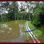 Beautiful 2,600 m2 LAND SALE IN UBUD BALI TJUB421