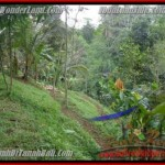 Magnificent PROPERTY 1,200 m2 LAND IN Ubud Tegalalang FOR SALE TJUB422