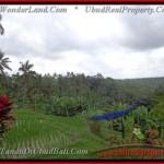 Magnificent PROPERTY UBUD LAND FOR SALE TJUB424