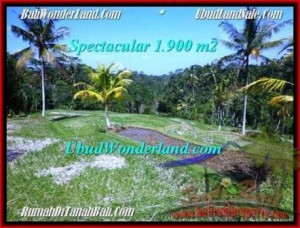 Magnificent PROPERTY LAND FOR SALE IN UBUD TJUB505