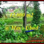 FOR SALE Beautiful PROPERTY LAND IN UBUD TJUB492