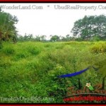 Magnificent 12,000 m2 LAND SALE IN UBUD BALI TJUB492
