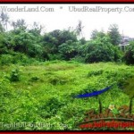 FOR SALE Beautiful 12,000 m2 LAND IN UBUD BALI TJUB492
