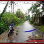 Affordable 12,000 m2 LAND IN UBUD BALI FOR SALE TJUB492