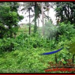 Exotic UBUD BALI 12,000 m2 LAND FOR SALE TJUB492