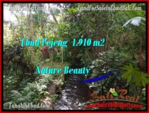 FOR SALE Affordable PROPERTY LAND IN Ubud Pejeng BALI TJUB504