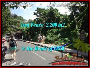 Affordable 2,200 m2 LAND SALE IN UBUD TJUB509