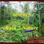 600 m2 LAND FOR SALE IN UBUD BALI TJUB493