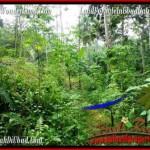 Affordable 600 m2 LAND IN UBUD BALI FOR SALE TJUB493