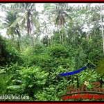 Exotic UBUD BALI 600 m2 LAND FOR SALE TJUB493