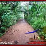 FOR SALE Beautiful 600 m2 LAND IN UBUD BALI TJUB493