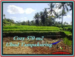 Beautiful 570 m2 LAND IN UBUD BALI FOR SALE TJUB511