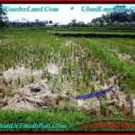 LAND SALE IN Sentral Ubud BALI TJUB500