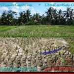 FOR SALE Affordable LAND IN Sentral Ubud BALI TJUB500