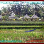 Magnificent LAND FOR SALE IN UBUD TJUB500