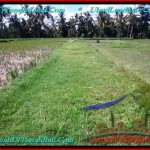 Beautiful LAND IN UBUD FOR SALE TJUB500