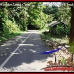 FOR SALE Affordable LAND IN Ubud Tegalalang BALI TJUB503