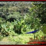 Beautiful LAND IN UBUD FOR SALE TJUB503