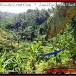 Exotic PROPERTY LAND SALE IN UBUD TJUB503