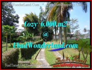 Beautiful PROPERTY LAND IN UBUD FOR SALE TJUB507