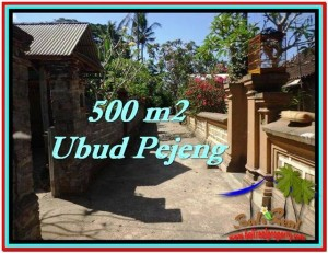 Beautiful PROPERTY 500 m2 LAND FOR SALE IN Ubud Pejeng TJUB515