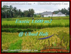FOR SALE Magnificent 1,600 m2 LAND IN UBUD BALI TJUB487